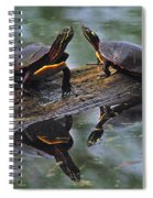Midland Painted Turtles Spiral Notebook