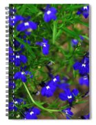 Midnight Blue Spiral Notebook