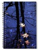 Midnight Stillness Spiral Notebook