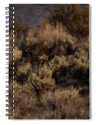 Midnight Sage Brush Spiral Notebook