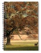 Mighty Oak Spiral Notebook