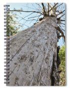 Mighty Tree And The Bark Beetle Spiral Notebook