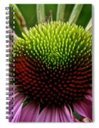 Miles Of Smiles Spiral Notebook