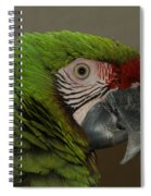 Military Macaw  Spiral Notebook