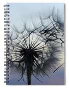 Wind Blown 1 Spiral Notebook