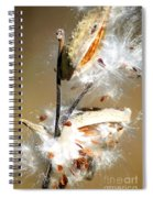 Milkweed  Explosion Spiral Notebook