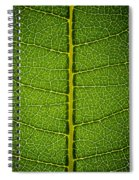 Milkweed Leaf Spiral Notebook