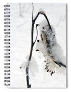 Milkweed Seed Pod In Winter Spiral Notebook