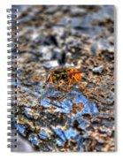 Mind Your Own Buzznuss Spiral Notebook