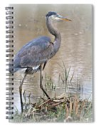 Mingo Great Blue Spiral Notebook