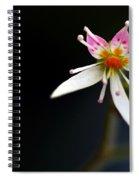 Mini Cactus Flower Spiral Notebook