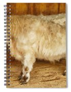 Mini Moo Spiral Notebook