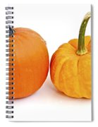 Mini Pumpkins Spiral Notebook