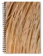 Minke Whale Baleen Spiral Notebook