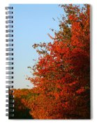 Minnesota Morning Spiral Notebook