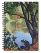 Mirror Reflection Spiral Notebook