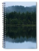 Mirror Reflections Spiral Notebook