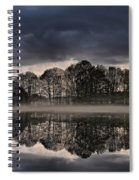 Mirrored Trees Spiral Notebook