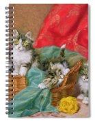Mischievous Kittens Spiral Notebook