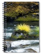 Misery Creek Spiral Notebook