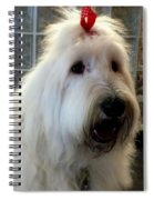 Miss Daisy May Spiral Notebook