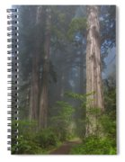 Mists Rising From Lady Bird Johnson Grove Spiral Notebook