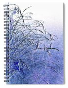 Misty Blue Spiral Notebook