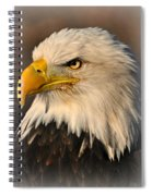Misty Eagle Spiral Notebook