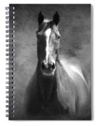 Misty In The Moonlight Bw Spiral Notebook