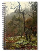 Misty Tree Spiral Notebook