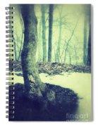 Misty Winter Woods Spiral Notebook