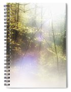 Misty Woods Spiral Notebook