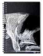 Mitzy Spiral Notebook