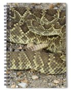 Mohave Diamondback Rattlesnake Coiled Spiral Notebook