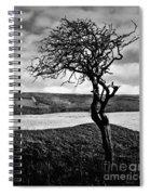 Moisonnerie Bw Spiral Notebook