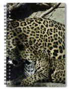 Mom And Baby Cheetah Spiral Notebook