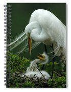 Mom And Me Spiral Notebook