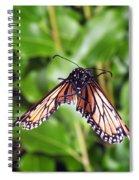 Monarch Butterfly In Flight Spiral Notebook