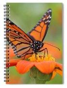 Monarch Butterfly Macro Spiral Notebook