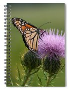 Monarch Butterfly On Bull Thistle Wildflowers Spiral Notebook