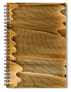 Monarch Butterfly Scales, Sem Spiral Notebook