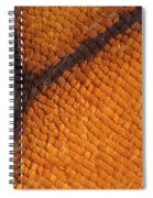 Monarch Butterfly Wing Scales Spiral Notebook