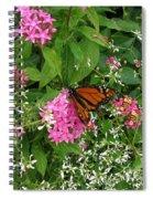 Monarch In The Garden   Spiral Notebook