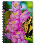 Monarch Of Blowing Rock Spiral Notebook