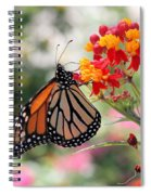 Monarch On Butterfly Weed Spiral Notebook