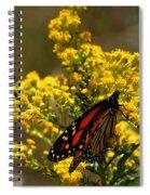 Monarchs On Yellow Spiral Notebook