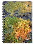 Monetesque Spiral Notebook