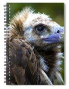 Monk Vulture Spiral Notebook