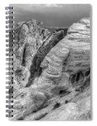 Monochrome Landscape Project 4 Spiral Notebook