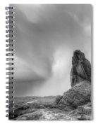 Monochrome Landscape Project 5 Spiral Notebook